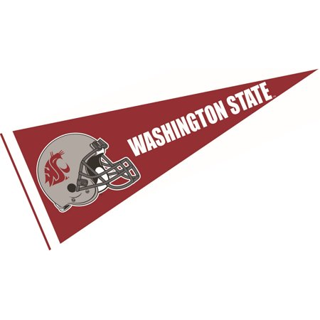 Washington State Cougars Football Helmet 12