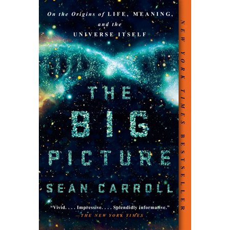 The Big Picture : On the Origins of Life, Meaning, and the Universe (The Meaning Of Life The Universe And Everything)
