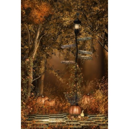 MOHome Polyster 5x7ft Autumn Scenery Background Park Street Lamp Photography Backdrop Road Signpost Pumpkin Fall Vines Flowers Thanksgiving Kid Girl Boy Adult Portrait Halloween Photo Studio Props
