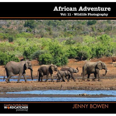 African Adventure: Wildlife Photography - eBook