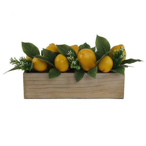 August Grove 13'' Beaded Lemons Desktop Succulent Plant in Wood Ledge MD