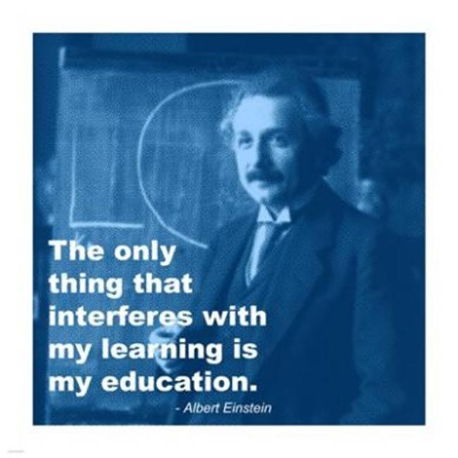 Pivot Publishing - A PPAPVP2805 Einstein Education Quote -14 x 14- Poster Print