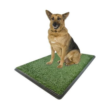 X-large Potty Pad - Indoor Dog Bathroom 30 inch  X 20 inch  X 2 inch ()