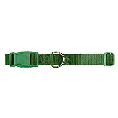 zack & zoey ? wide nylon dog collar, fits necks 10 to 16, green