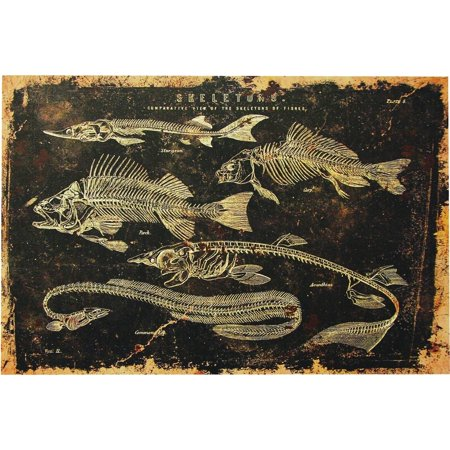 Skeleton Fish Canvas without Frame Halloween Decoration