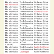 The Information - Audiobook