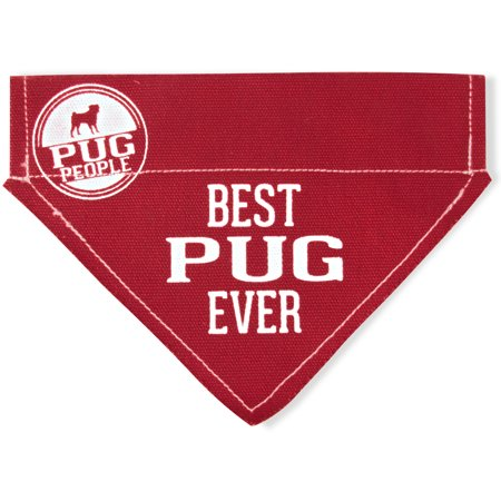 (Pavilion - Best Pug Ever - Red Canvas Small Dog Bandana Collar - 7