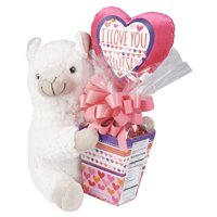 Way to Celebrate Llama Plush and Candy Gift