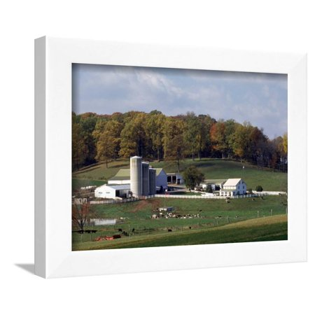 Farm, Pa Dutch Country, Lancaster, PA Framed Print Wall Art By Roger