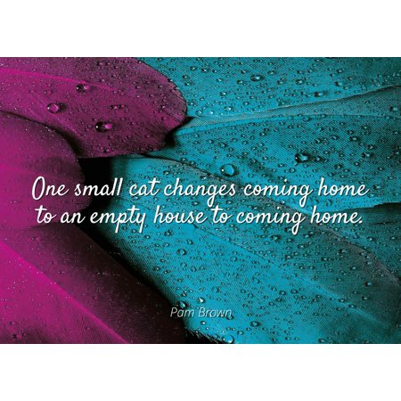 Pam Brown - One small cat changes coming home to an empty