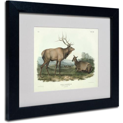 "Trademark Fine Art ""Cervus Canadensis"" Canvas Art by John James Audubon, Black Frame"