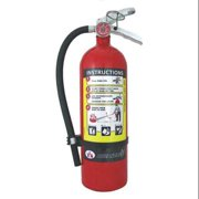 Badger 5.5 lb. Capacity, Fire Extinguisher, Dry Chemical, ADV-550