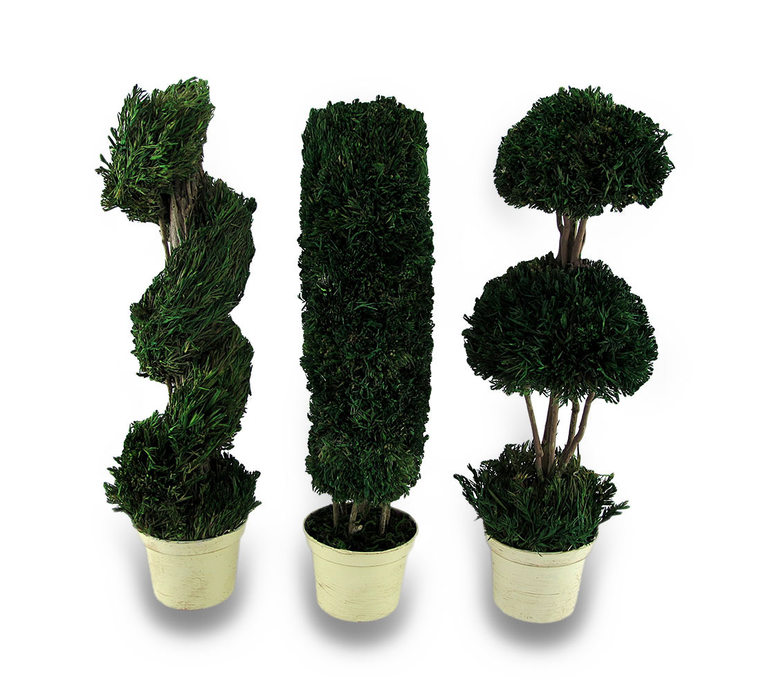 Decorative 3 Piece Tabletop Topiary Set 14 in.