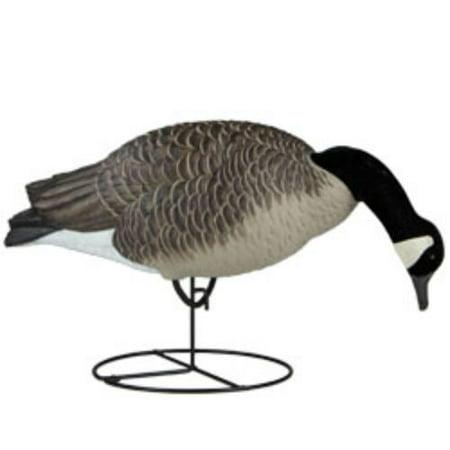 Pets Signature Series Feeder (Dakota Decoy 19200 Waterfowl Hunting Signature Series Feeder Geese (6 Pack))