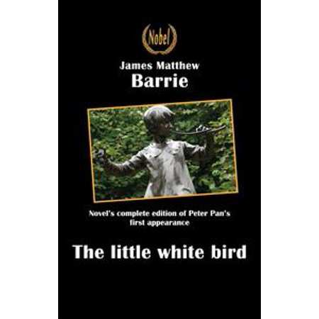 The little white bird or the first appearance of Peter Pan - eBook