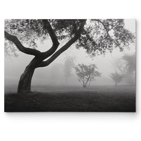Wexford Home 'Into the Mist' by Monte Nagler Photographic Print on Wrapped Canvas Black Wexford Wexford Single