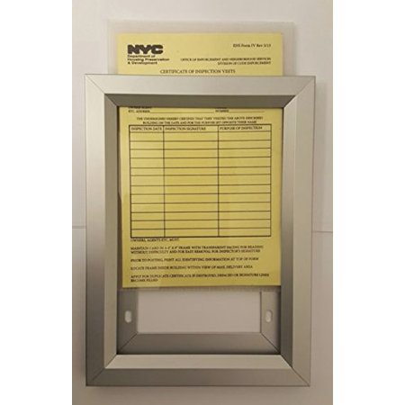NYC Inspection Frame 6