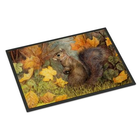 Grey Squirrel in Fall Leaves Door