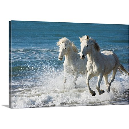 Great BIG Canvas Scott Stulberg Premium Thick-Wrap Canvas entitled Camargue Horses running on the beach, South of France, France