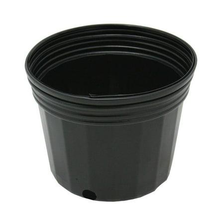 1 Gal. Nursery Pots (10-Pack)