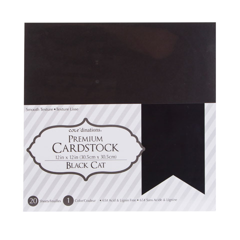 Cardstk Valuepack Black Cat 65Lbsmooth 12X12 20Pk