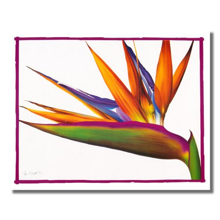 Bird Of Paradise Floral Flower Arrangement Wall Picture 8x10 Art Print