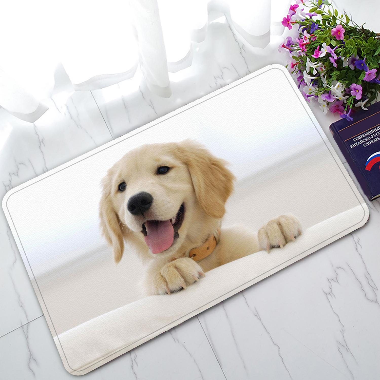 ZKGK Labrador Retriever Non-Slip Doormat Indoor/Outdoor/Bathroom Doormat 30 x 18 Inches
