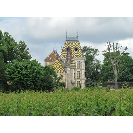 Castle French Wine - Canvas Print Beaune Summer France Wine Castle Stretched Canvas 10 x 14