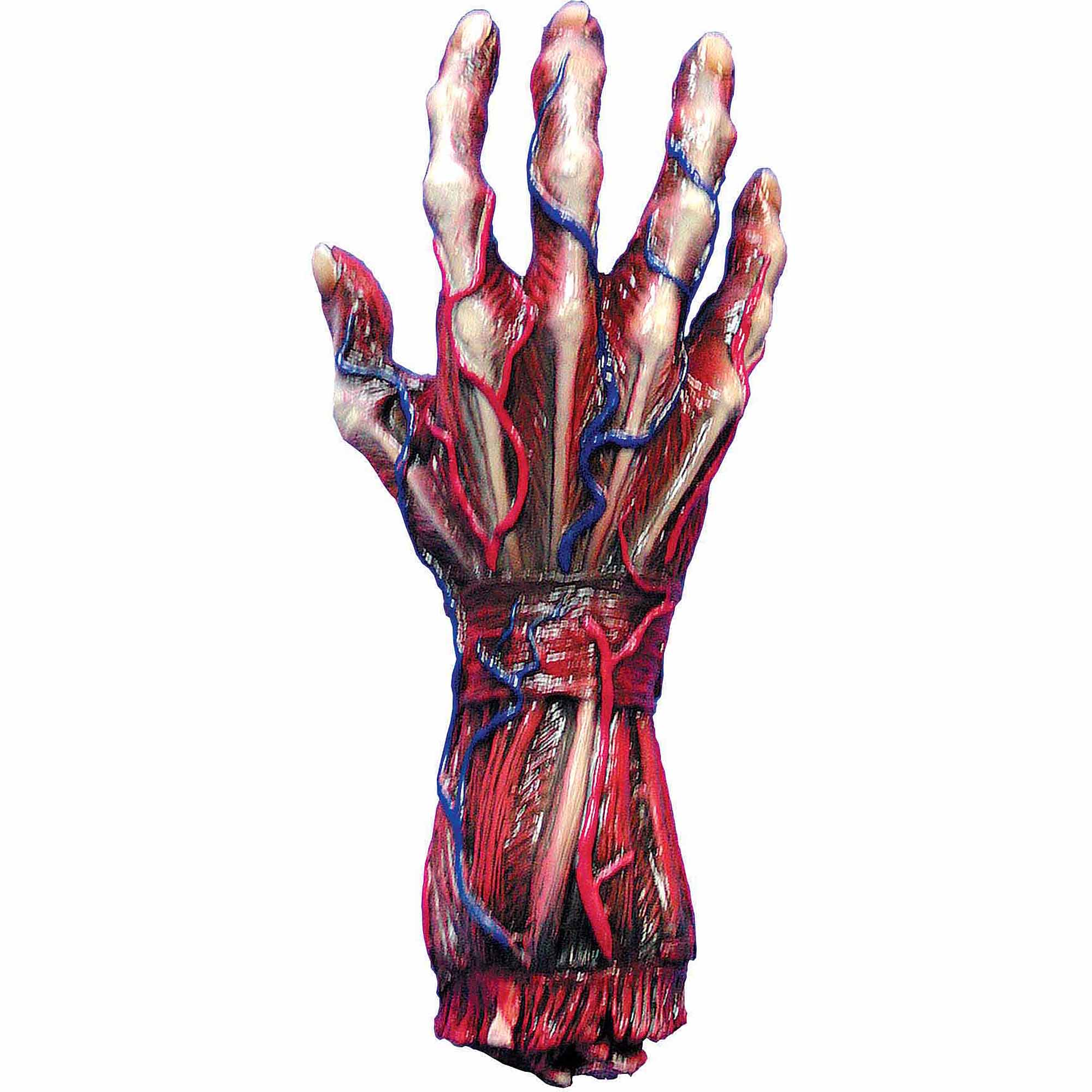 Skinned Right Hand Halloween Decoration