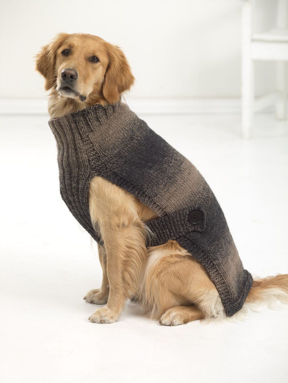 Contemporáneo Free Knitted Dog Sweater Patterns For Large Dogs ...