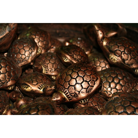 - Peel-n-Stick Poster of Collectible Shui Feng Metal Shell Tortoise Brown Poster 24x16 Adhesive Sticker Poster Print