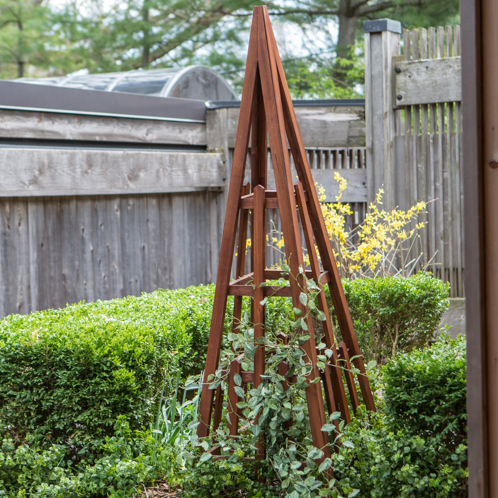 Coral Coast Halstead Wood Obelisk by