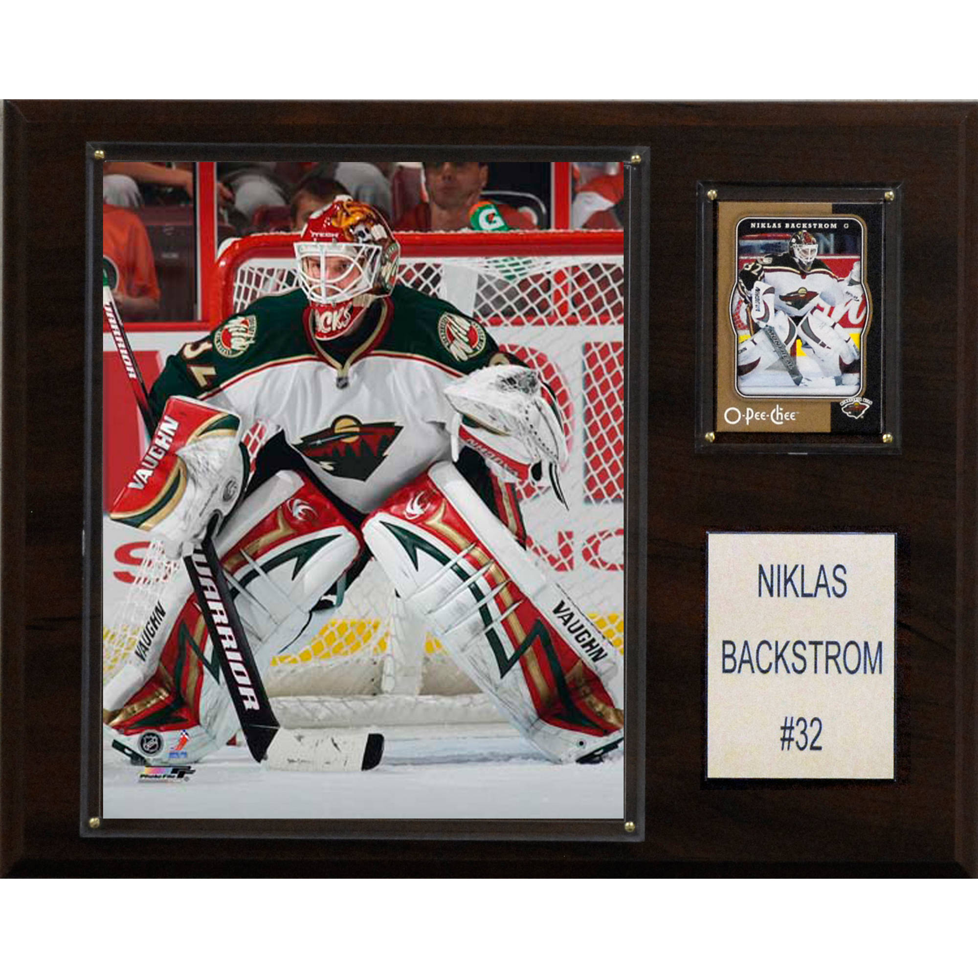 C&I Collectables NHL 12x15 Niklas Backstrom Minnesota Wild Player Plaque