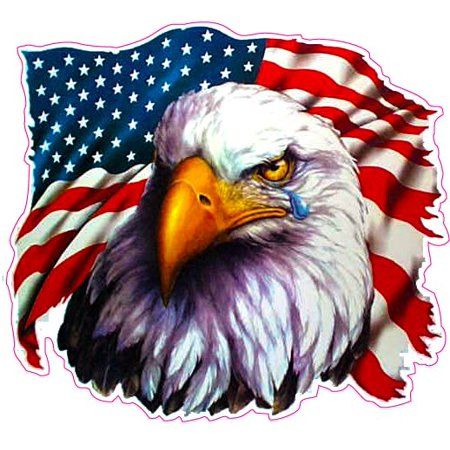 American Flag Eagle Crying Large 8 Decal Free Shipping In The