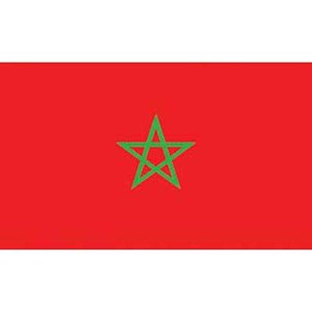 Morocco Flag On A Stick 12