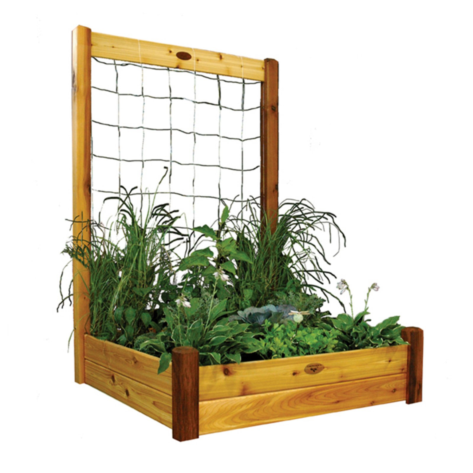 Gronomics 48L x 48W x 13H in. Raised Garden Bed with Trellis Kit