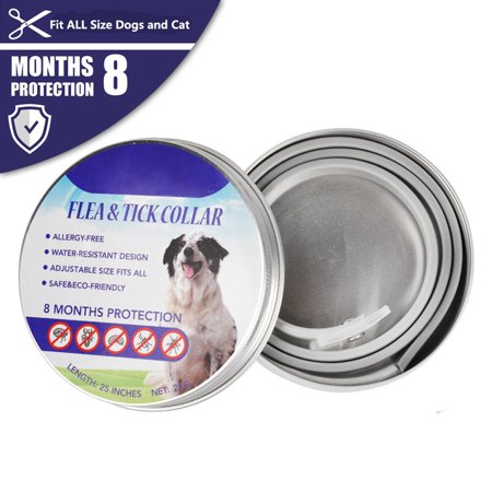 Flea Tick Collar for Dogs - Summer Pet Dog Cat Solution-Natural Essential Oil Grey Collar Flea Ticks Mosquitoes Control Adjustable (Flea Tick And Mosquito Control For Dogs)