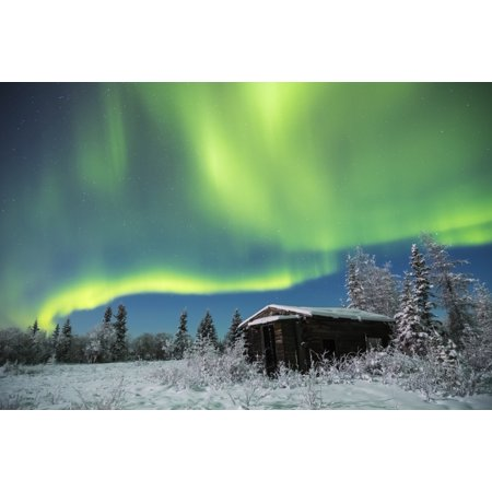 An abandoned cabin along the Richardson Highway sits quiet in the snow beneath the aurora on a cold winter night Alaska United States of America Poster Print by Steven Miley  Design (Best Cabins On Aurora)