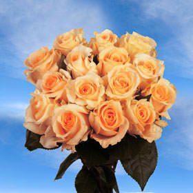 Globalrose cheap roses flowers delivery 50 yellow roses walmart globalrose cheap roses flowers delivery 50 yellow roses mightylinksfo