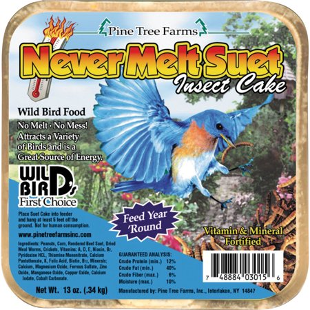 Pine Tree Farms Inc-Never Melt Suet Cake- Insect 13 Ounce ()