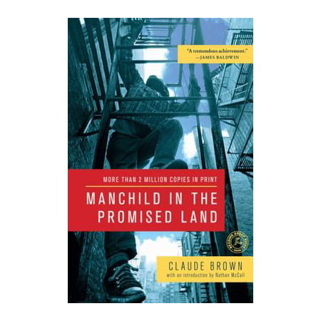 Manchild in the Promised Land - eBook