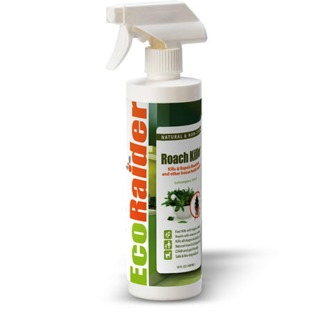 EcoRaider Roach Killer and Repellent (16OZ), Fast Kill & Lasting Repellency, Green & (Repellent 16 Ounce Concentrate)