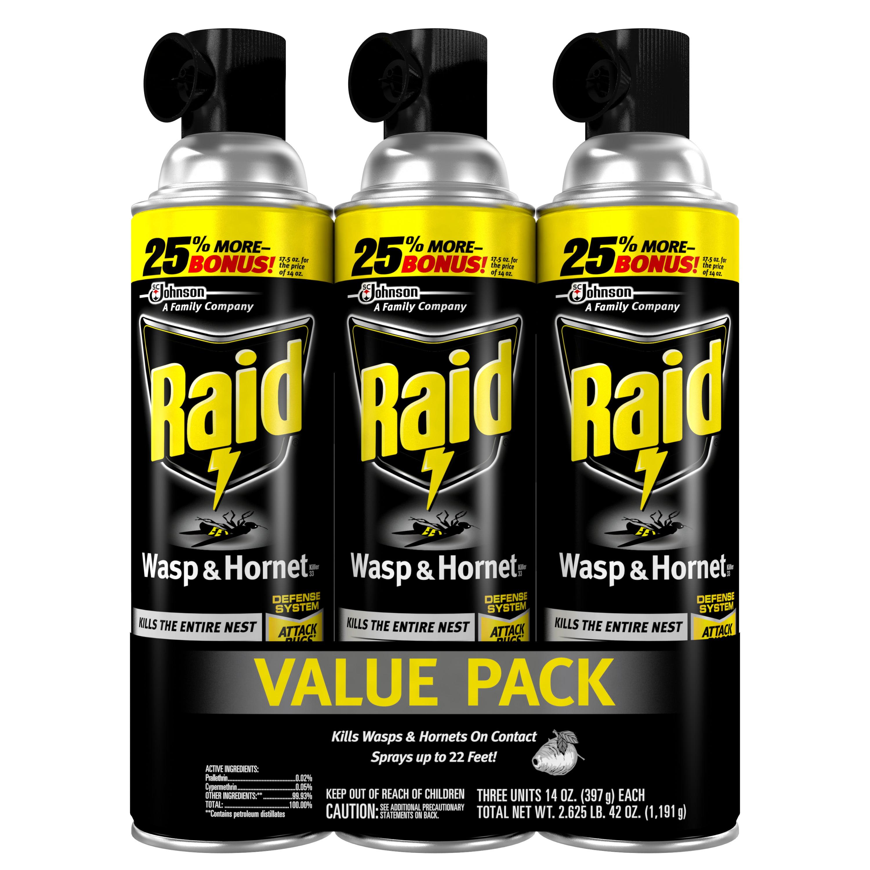 Raid Wasp & Hornet Killer (14 oz, 3 ct)