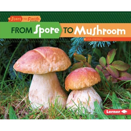 From Spore to Mushroom - eBook (Best Magic Mushroom Spores)