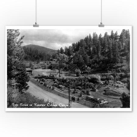 Colorado - Town View in Turkey Creek Canyon Photograph (9x12 Art Print, Wall Decor Travel (Canyon Creek Collection)
