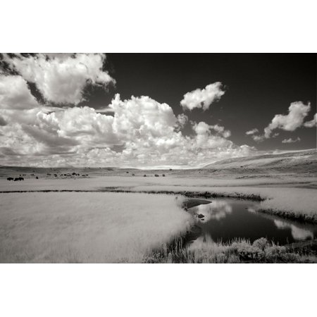 Yellowstone Creek and Clouds I Print Wall Art By George (Johnson Creek)