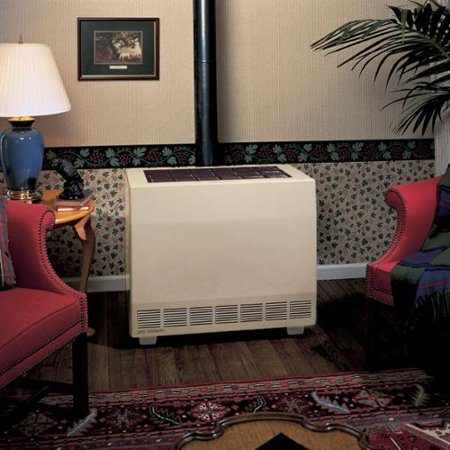 Empire Closed Front Room Heater W/Blower Natural Gas 65000 BTU ()