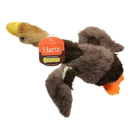 Hartz Nature's Collection Quackers Dog Toy 1.0 ea (Pack o...