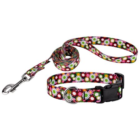 Country Brook Petz® Daisy Fields Deluxe Dog Collar & Leash
