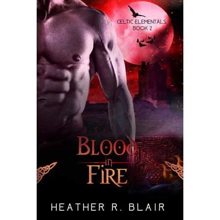 Blood In Fire - eBook